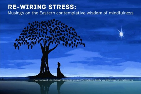 International Conference: Re-wiring stress...