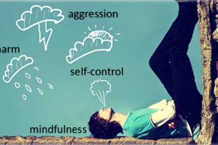 PhD thesis: Overcoming aggression: Musing...